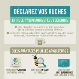 Déclaration des ruchers 2019